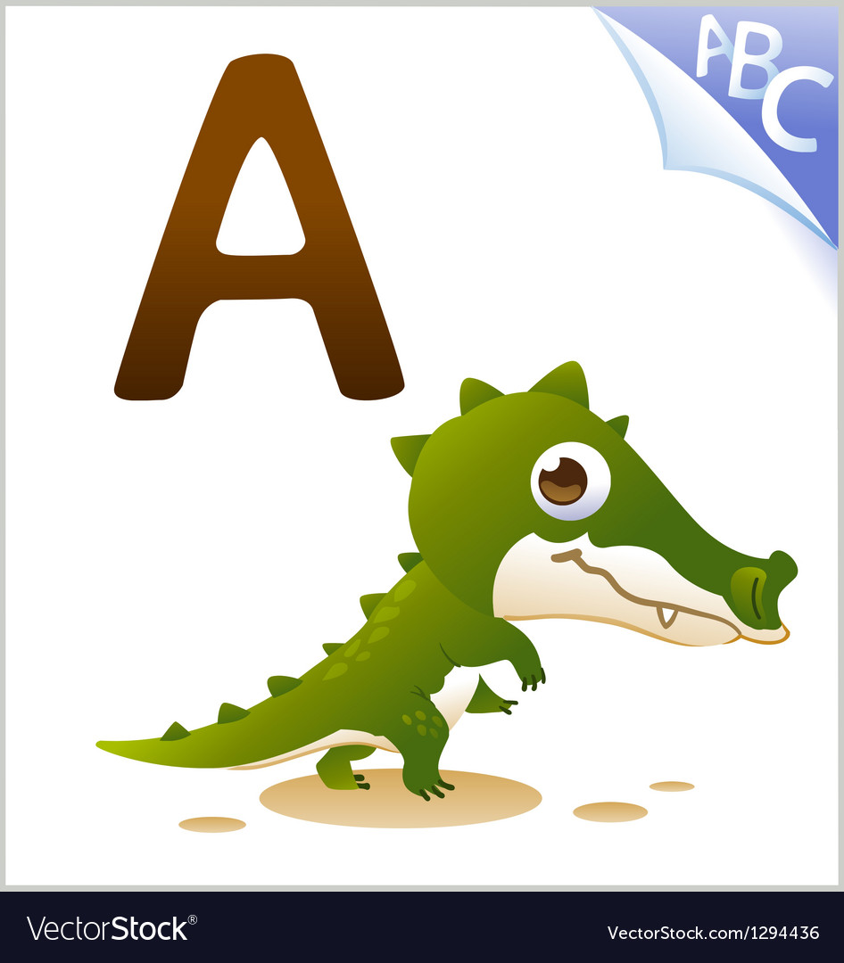 Animal alphabet for the kids A for the Alligator