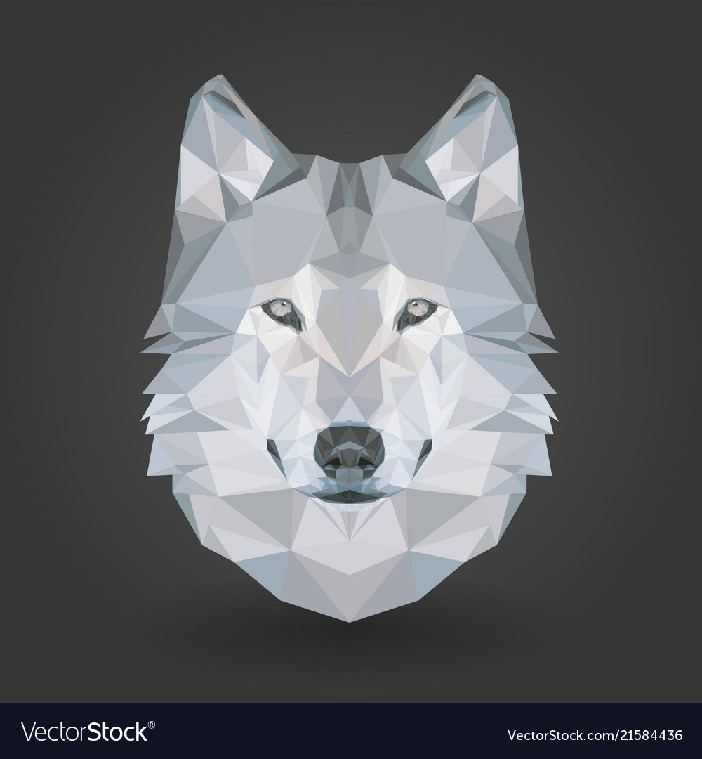 Low poly animal wolf 3d abstract