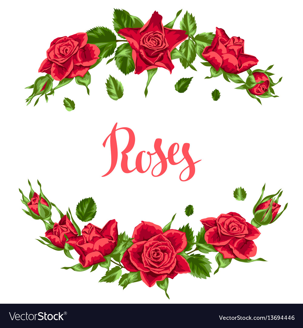 Decorative elements with red roses beautiful vector image