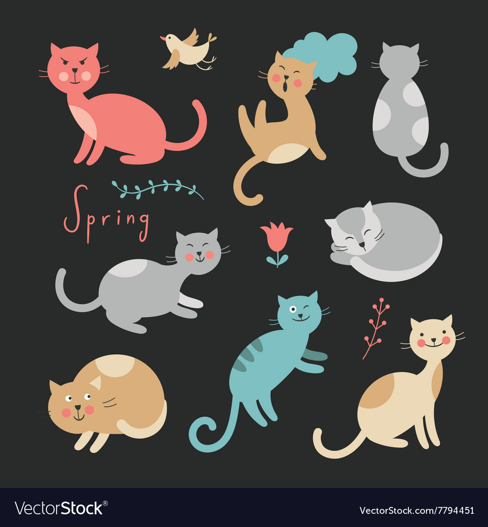 Funny cats on black background
