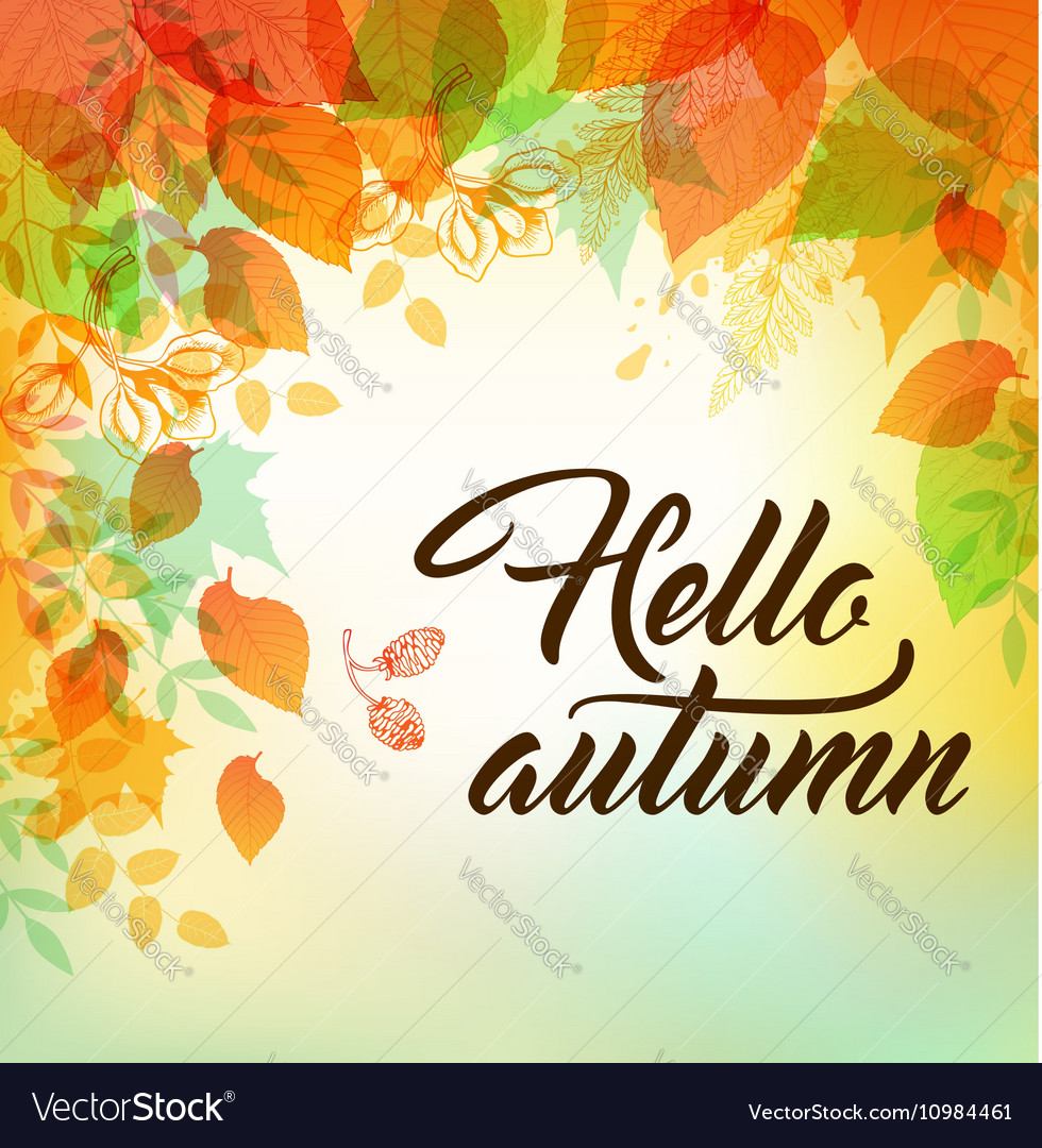 Autumn background with orange and yellow leaves