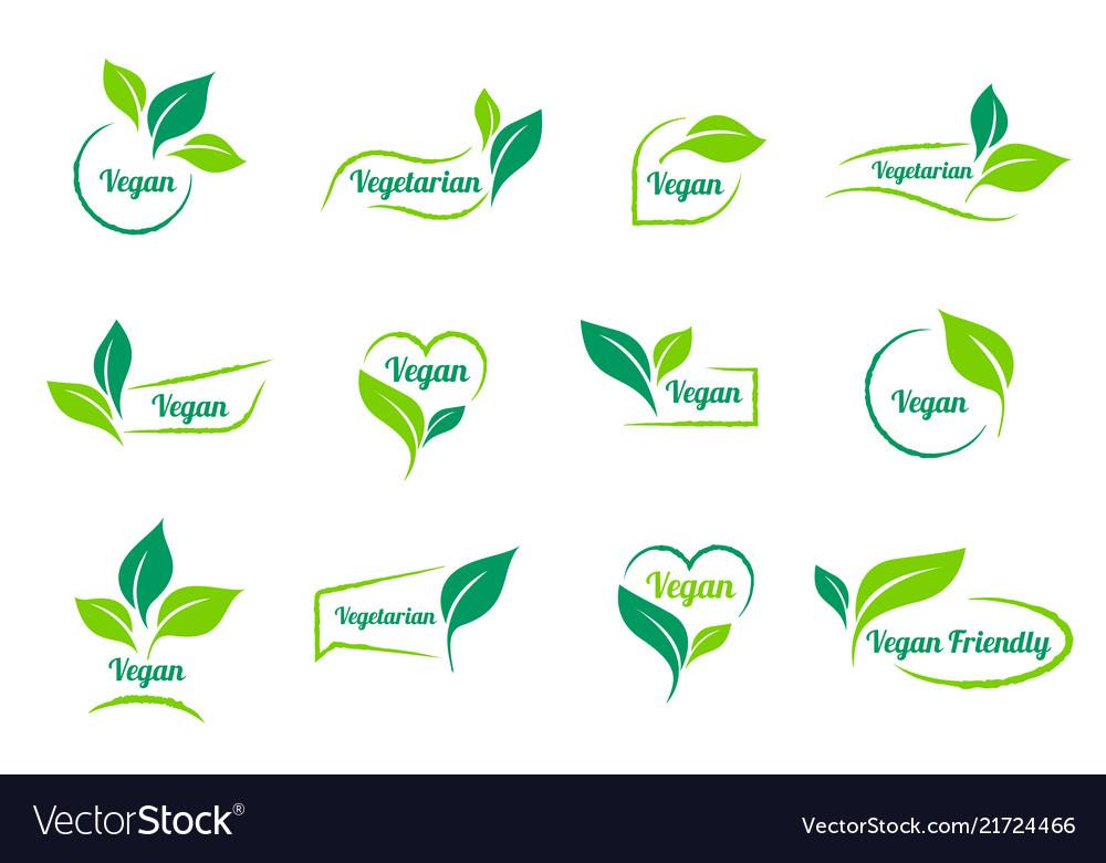 Bio ecology vegan sticker icons templates