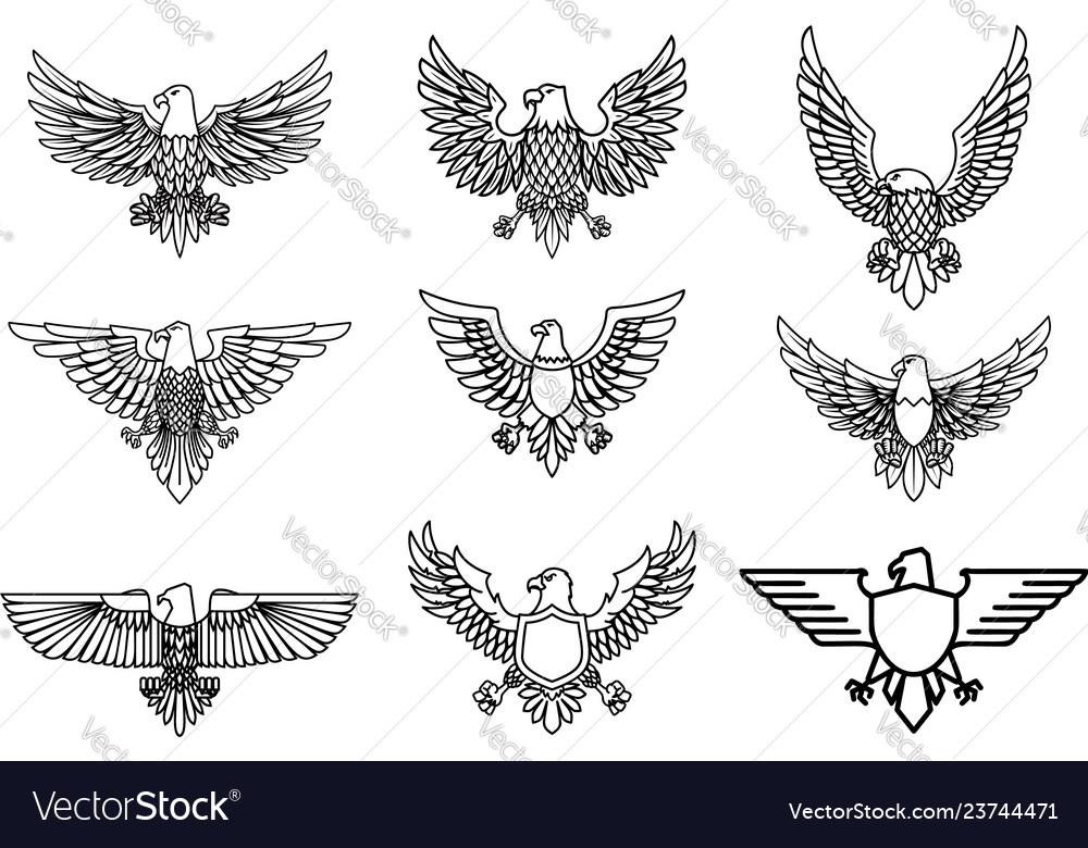 Set of eagle icons isolated on white design