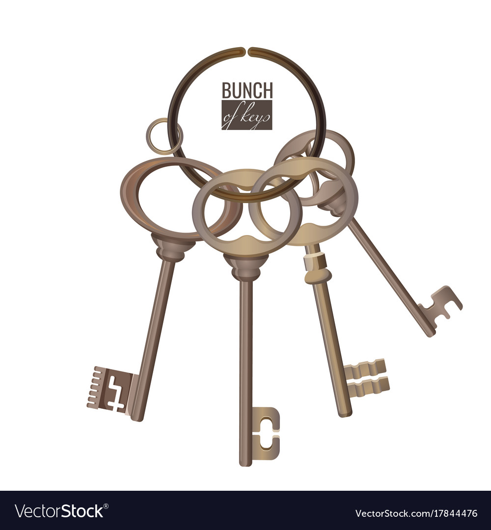 Bunch of keys metal chrome decorative unlock steel