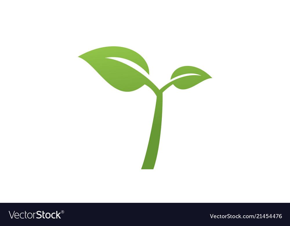 Leaf green logo