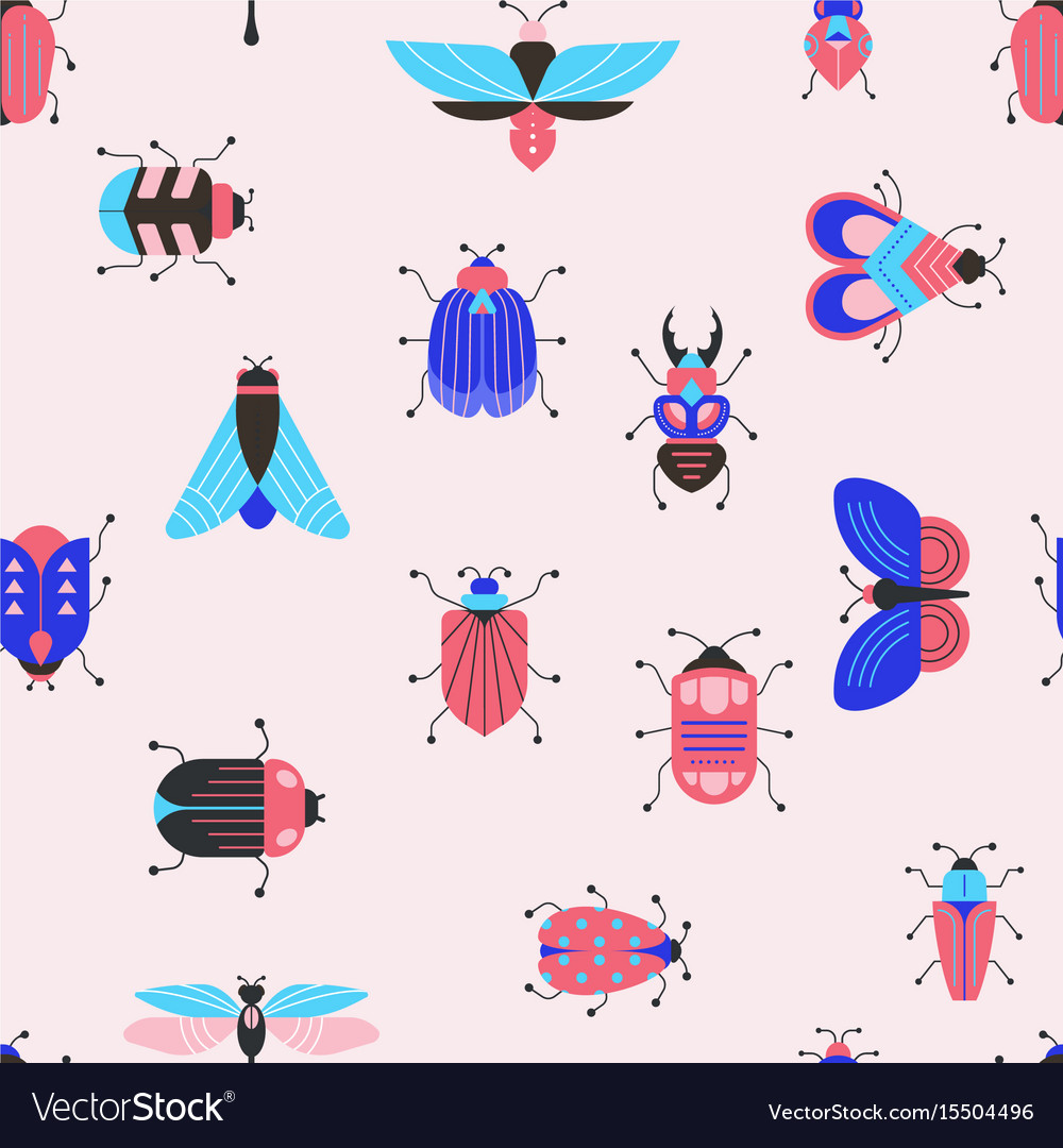 Bugs insects butterfly ladybug set