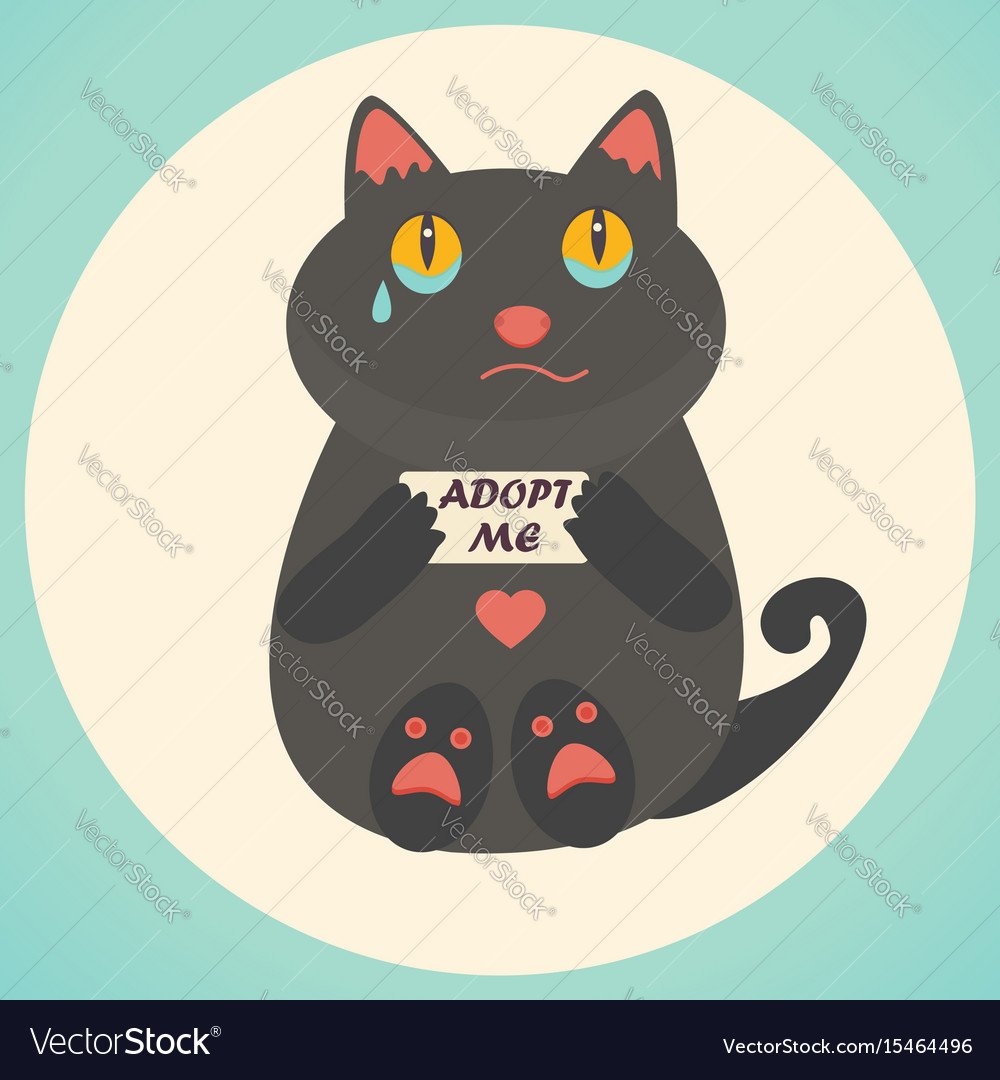 Cute cat adopt me text homeless animals concept