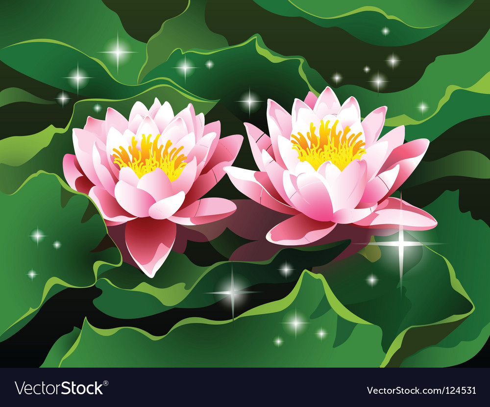 Lotus Flowers Royalty Free Vector Image Vectorstock