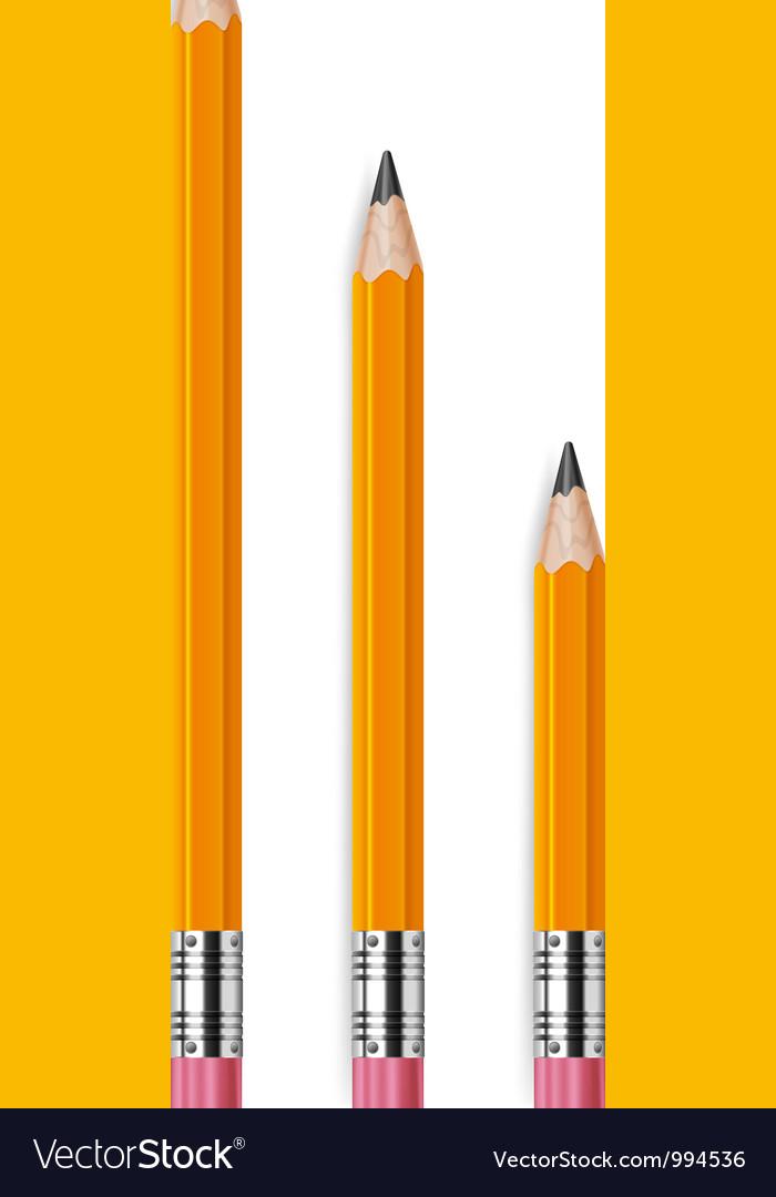 Pencils different lengths v vector image
