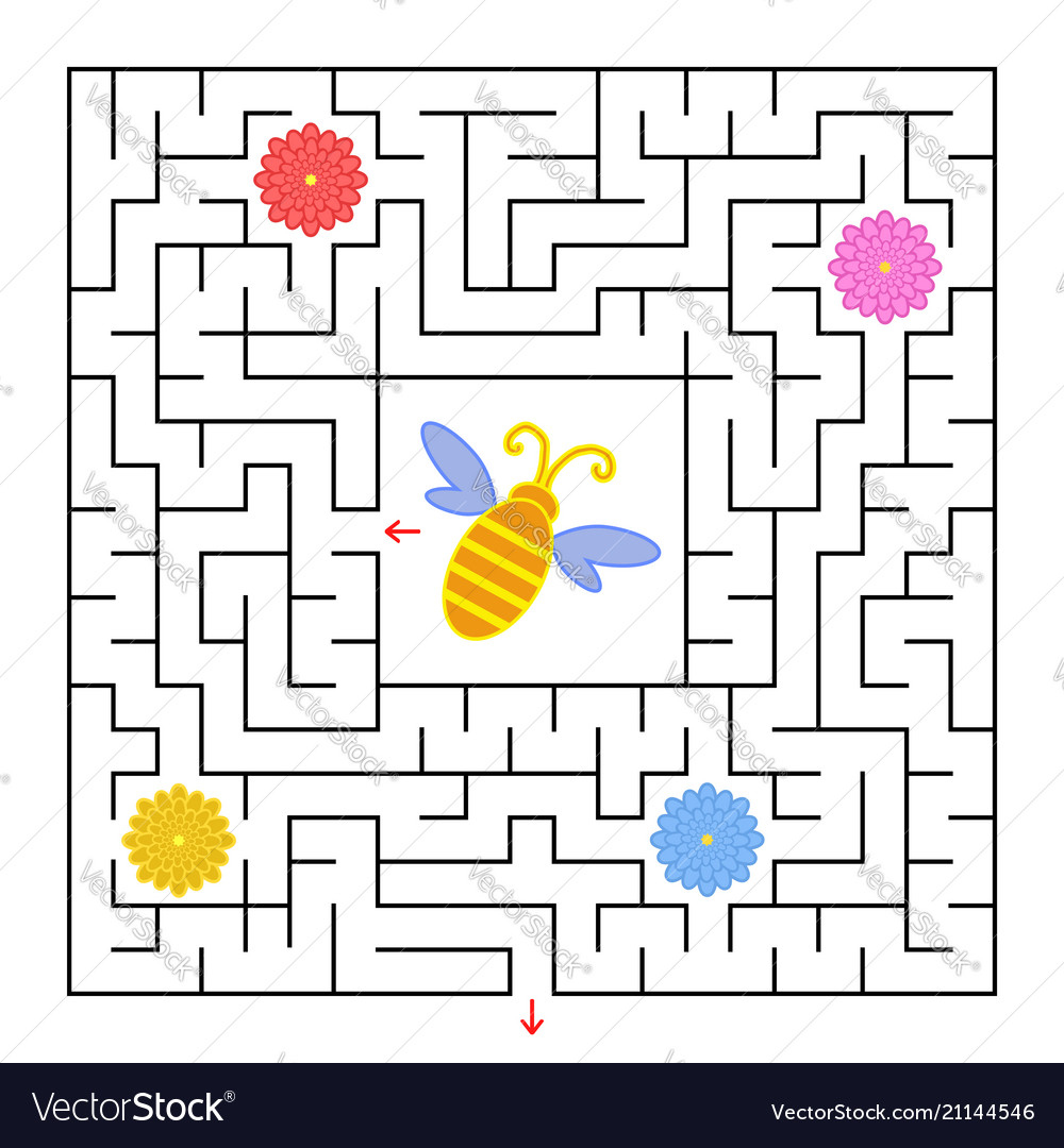 A square labyrinth help the bee to find a way out
