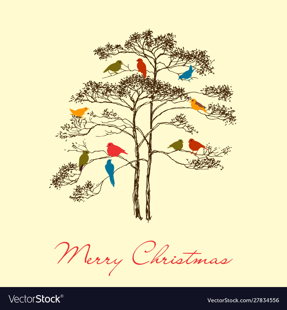 Birds christmas tree greeting card colorful cute