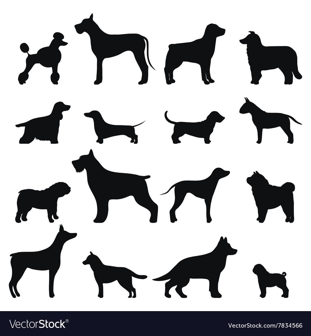 Dog breed black silhouette