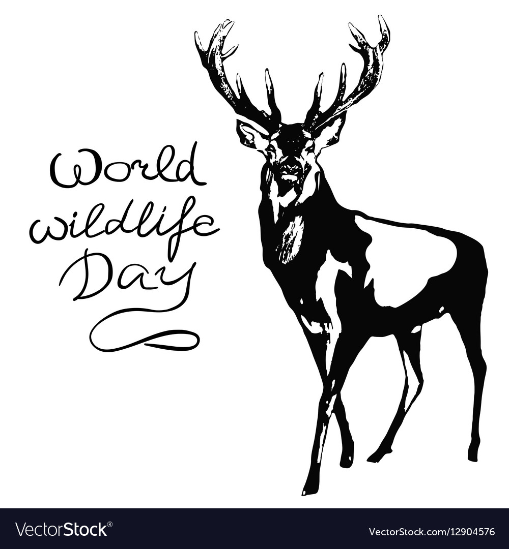 World wildlife day with background vector image