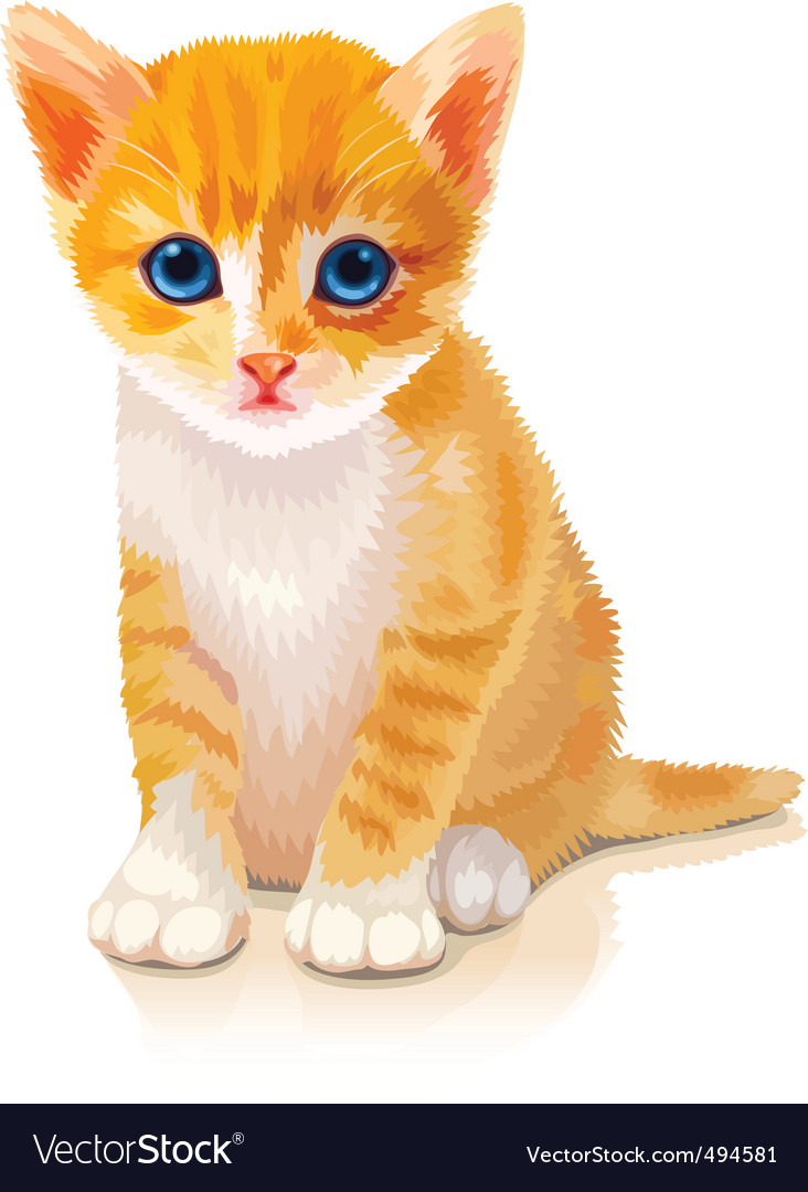 Cute orange kitten vector image