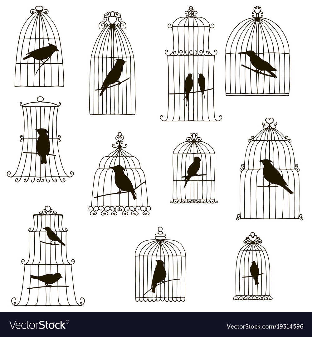 Birds in cages silhouettes