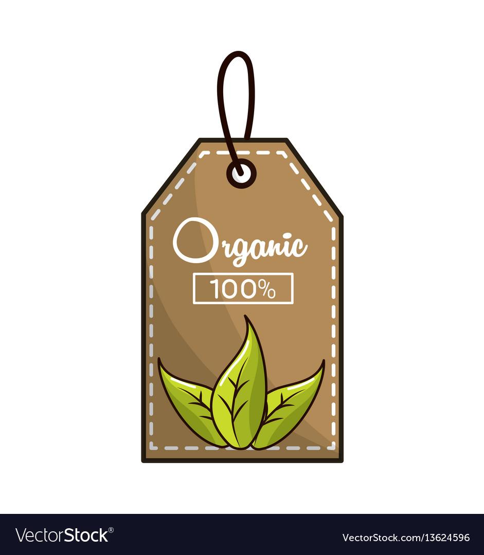 Emblem vegan food icon stock