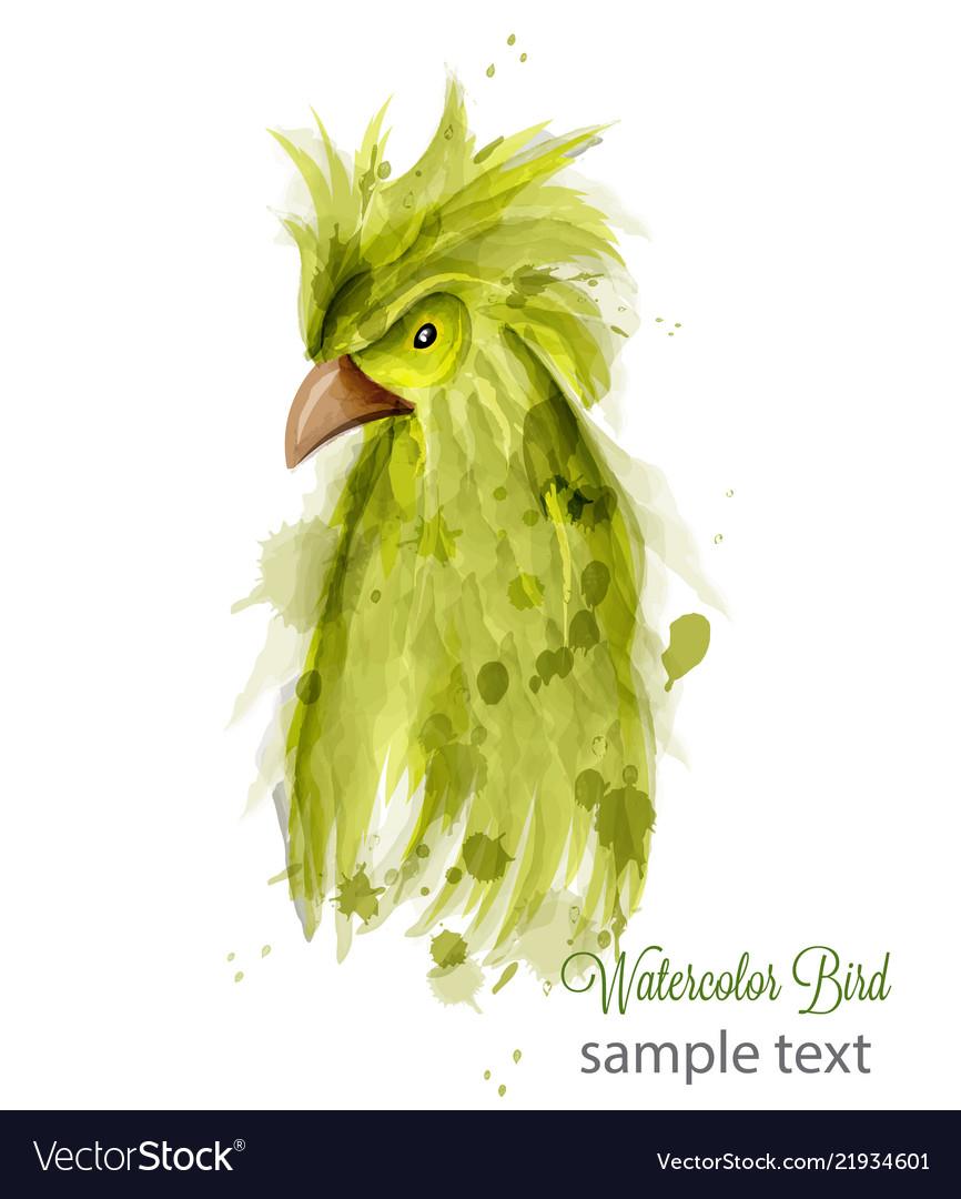Parrot bird watercolor cartoon style