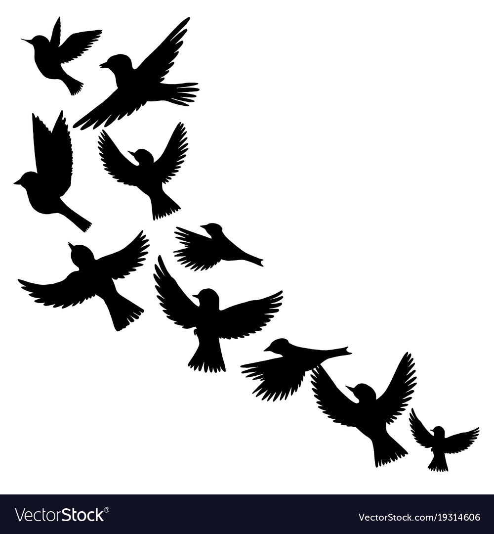 flying birds silhouettes royalty free vector image rh vectorstock com love bird silhouette vector love bird silhouette vector