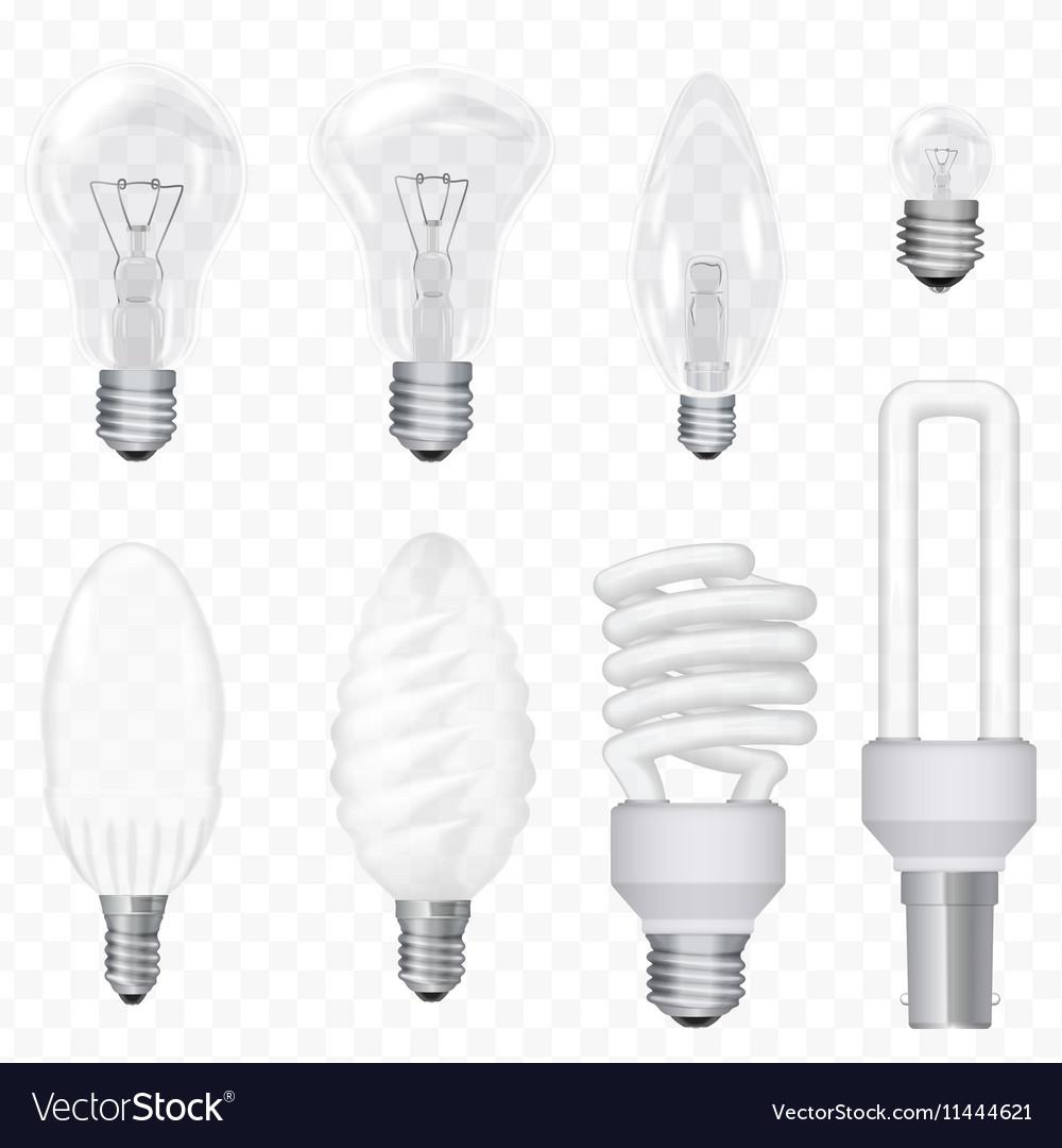 Realistic energy saving light bulbs lamps vector image