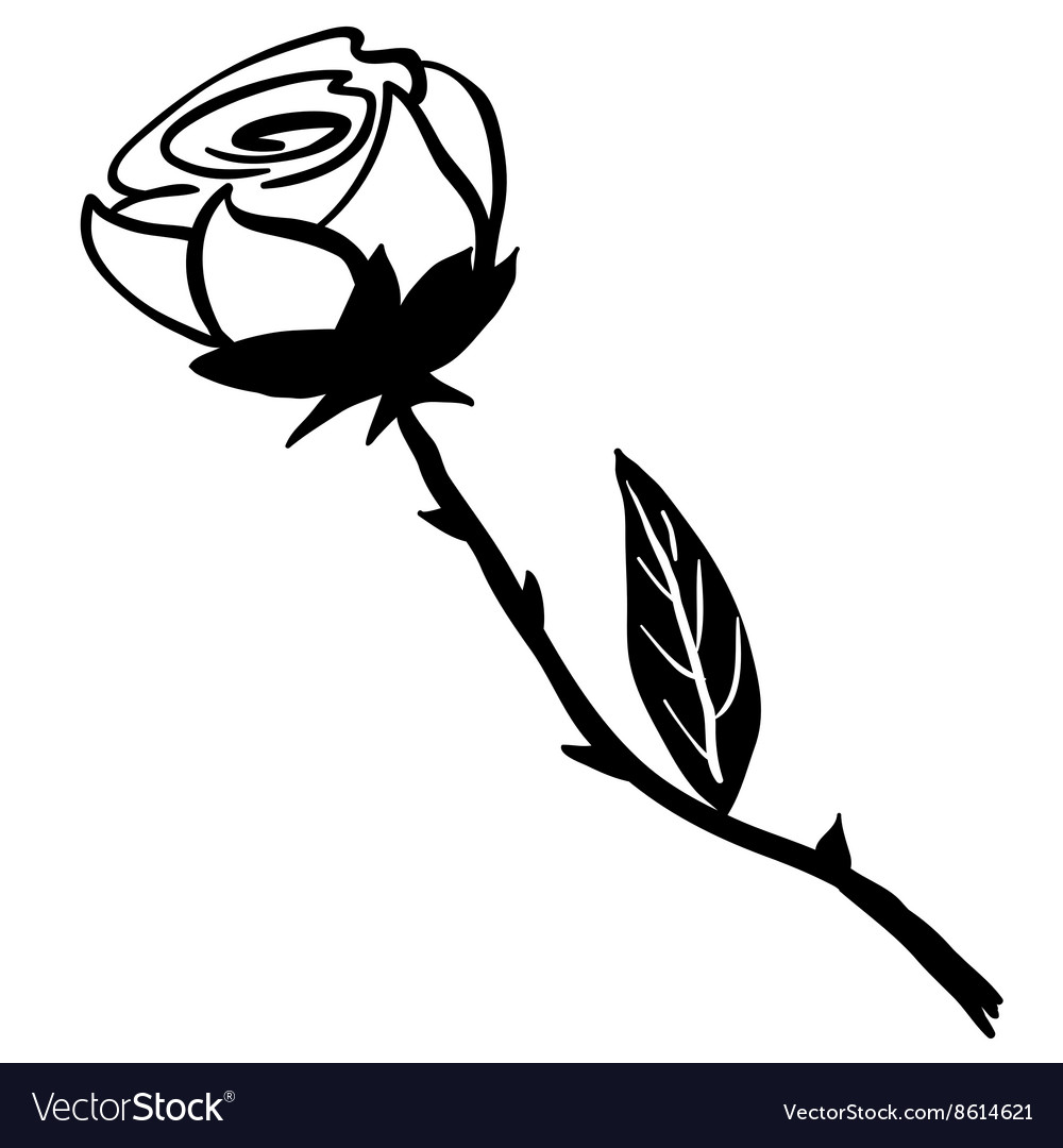 Simple black and white rose vector image