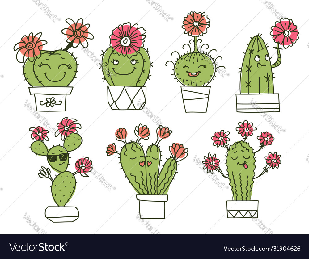 Cactuses cactuses and succulents with happy