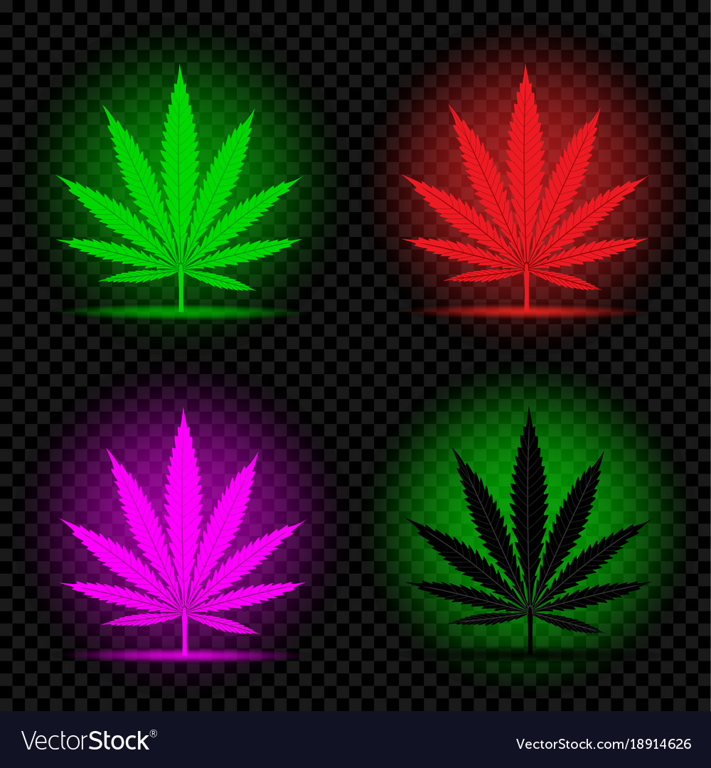 Neon Hemp Leaf Icon Set Royalty Free Vector Image