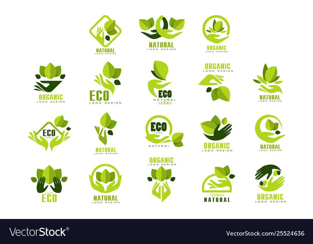 Eco organic natural logo design set premium