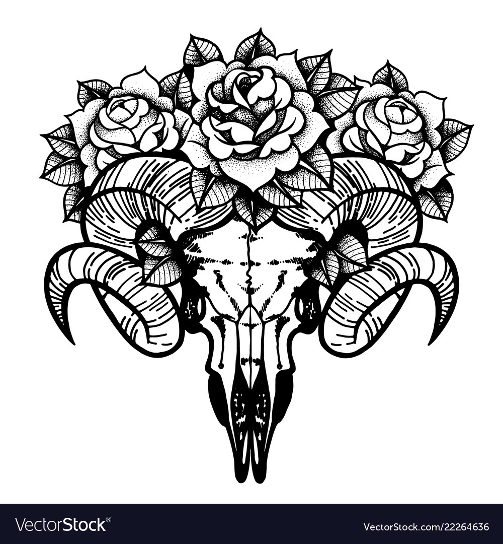 Rose tattoo with skull of a sheep isolated