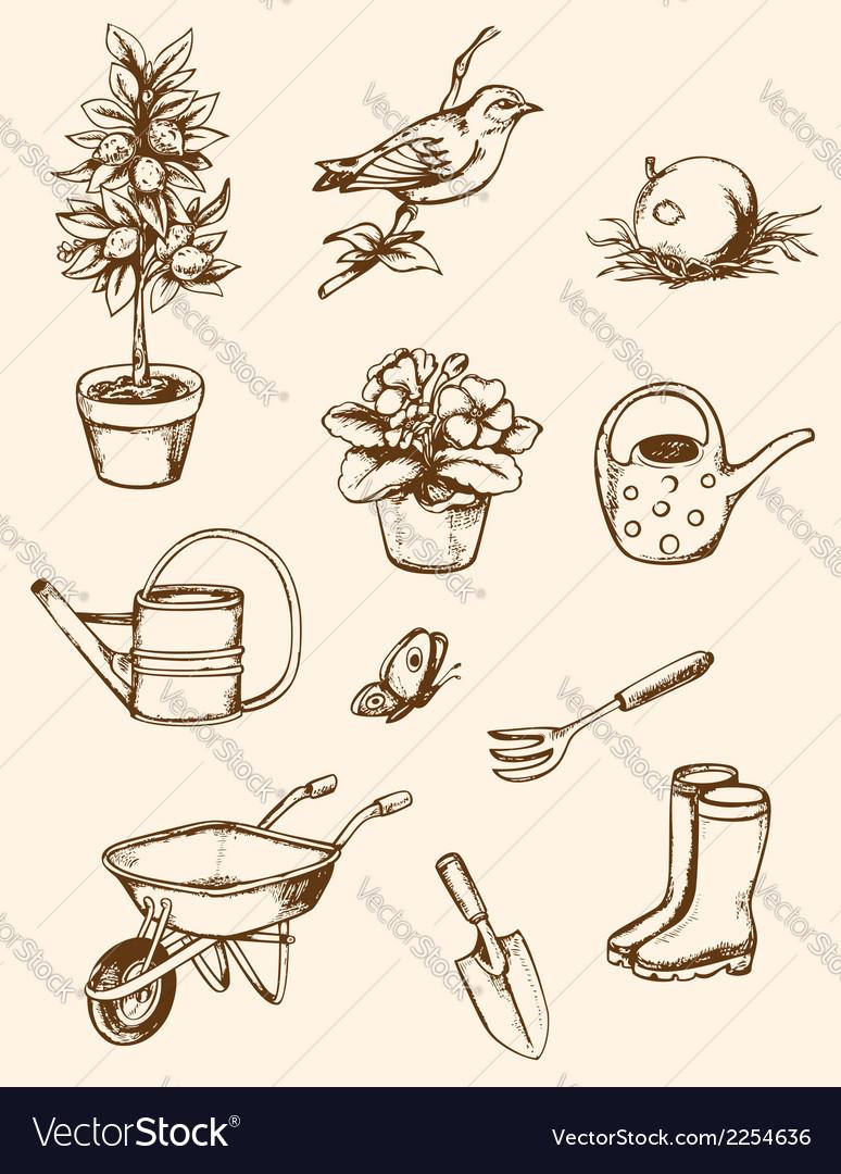 Vintage hand drawn garden tools vector image