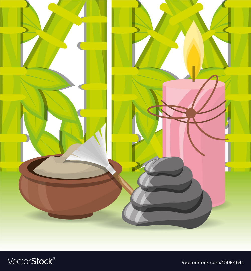 Spa natural products with towel and stones vector image