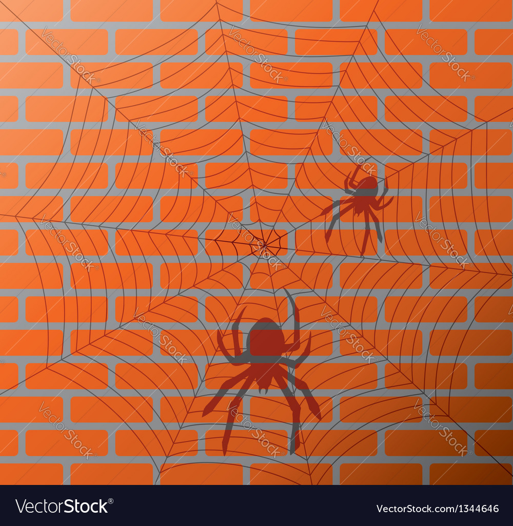 Spiders and web on a brick wall vector image
