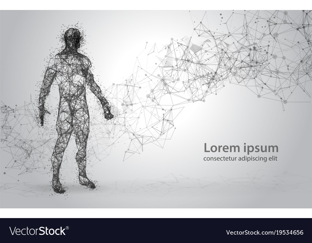 Abstract wire frame human body polygonal 3d model Vector Image