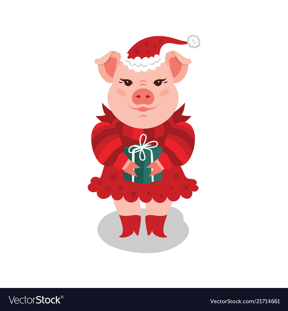 Christmas Pig.Funny Christmas Pig A Pink Pig In A Red Dress And