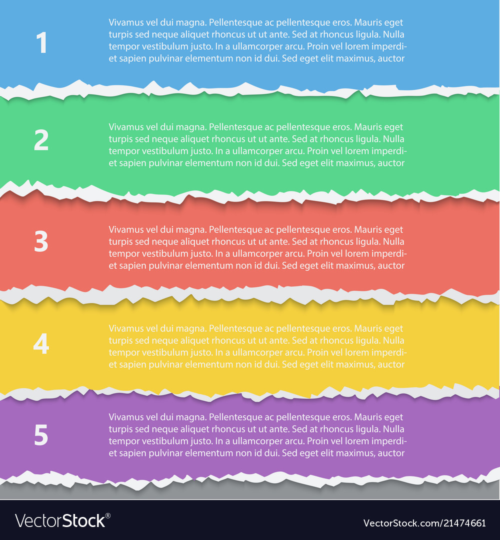Torn paper options infographic template
