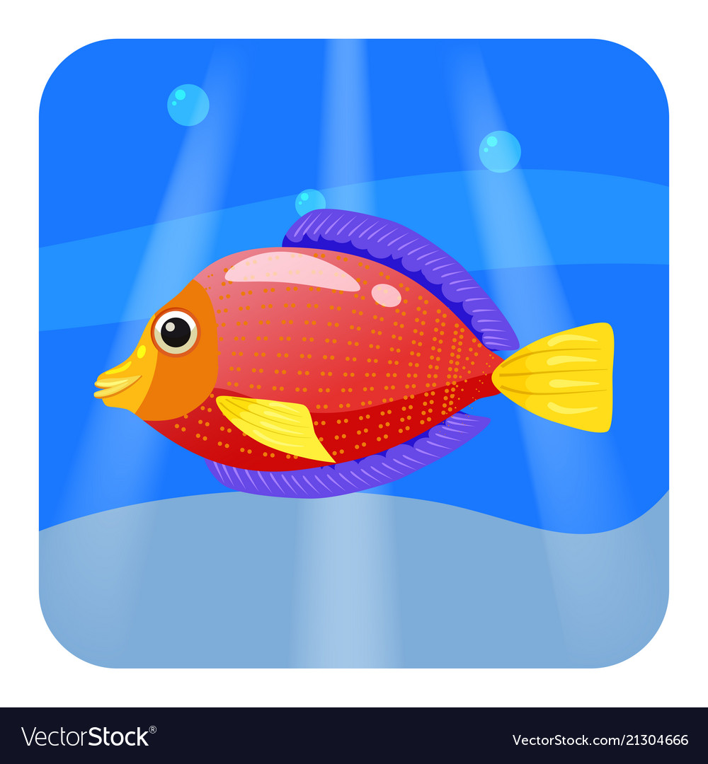 Famous Color Fish Images - Drawing Coloring - androidharga.info