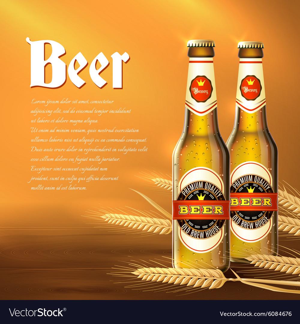 Beer Bottle Background vector image
