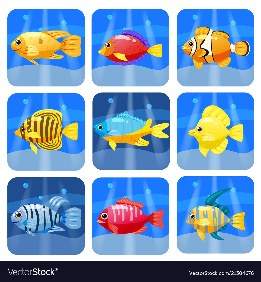 Cartoon trendy colorful reef animals big set