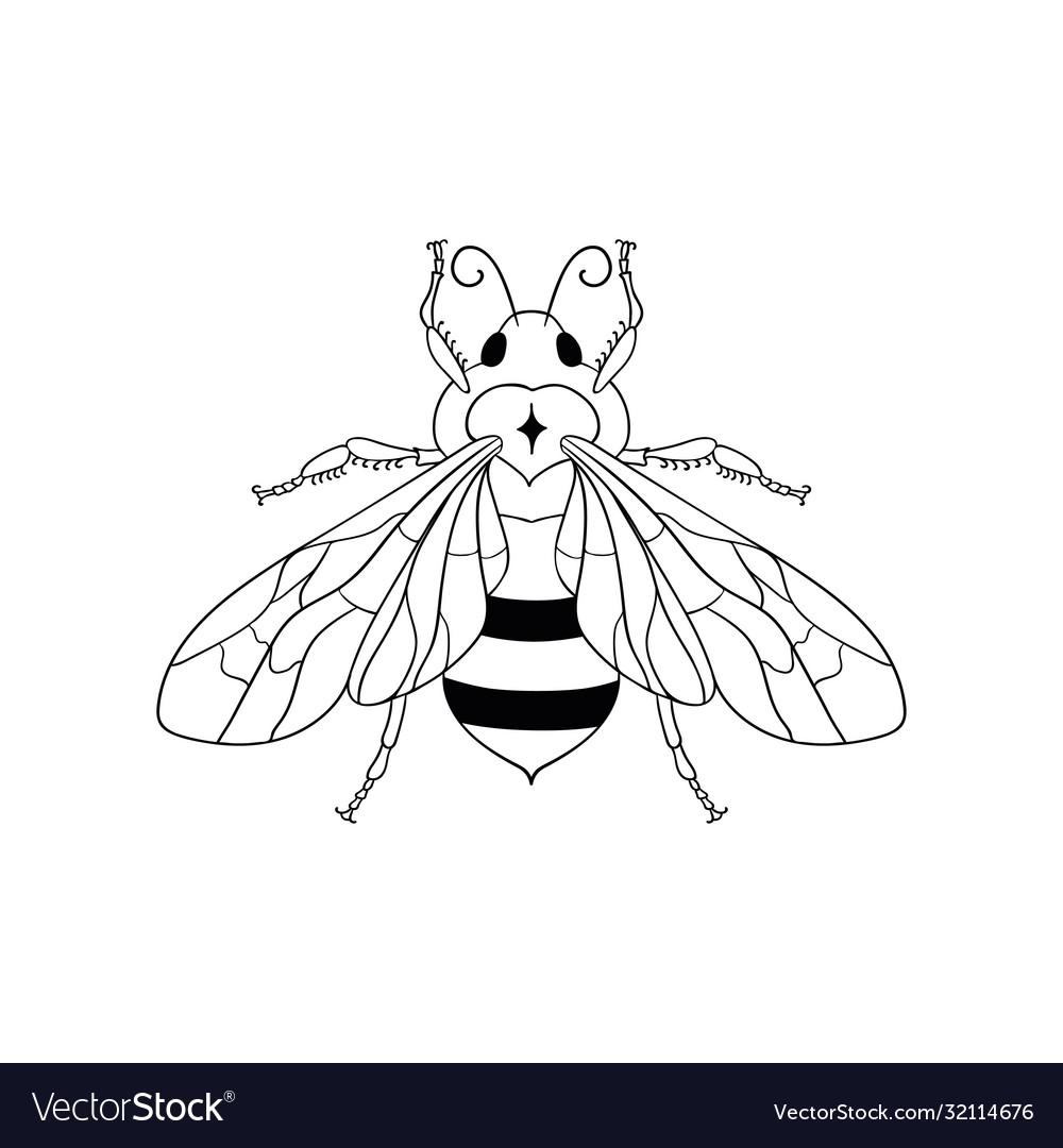 Honey bee and logo design element