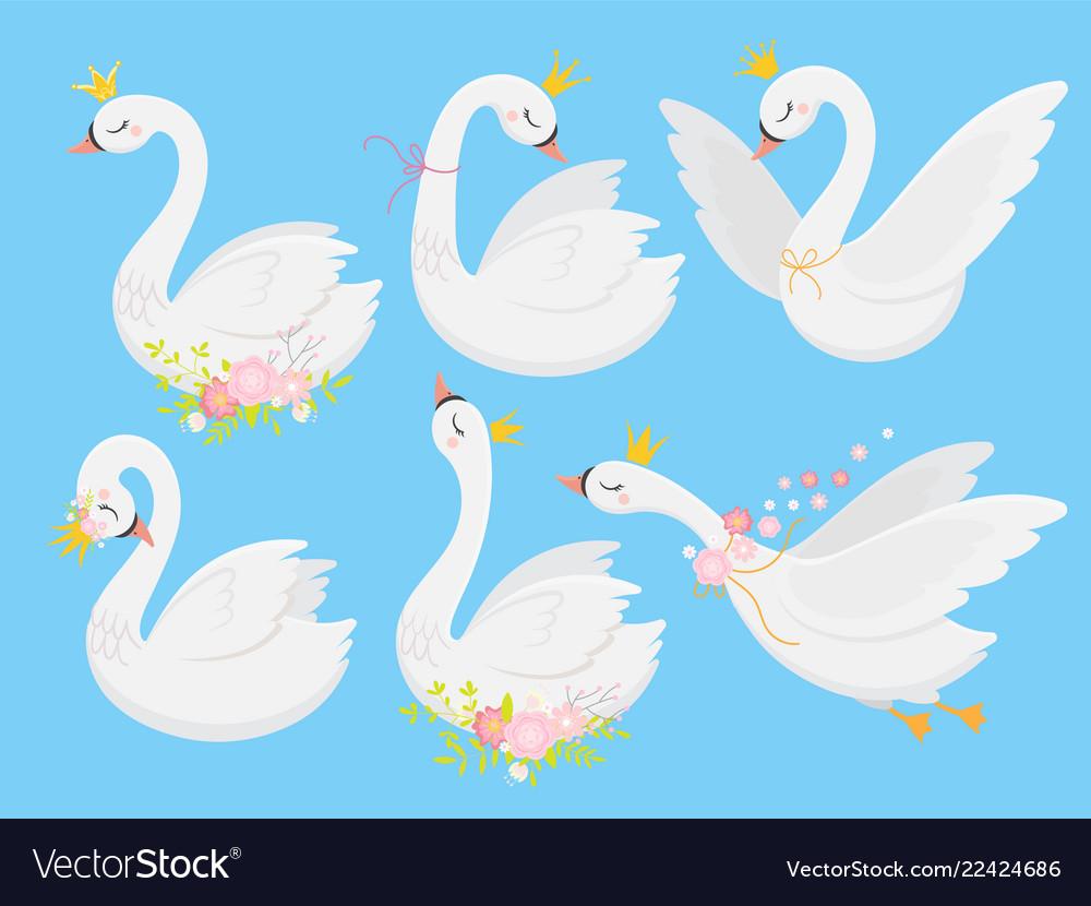 Cute princess swan beautiful white swans in gold