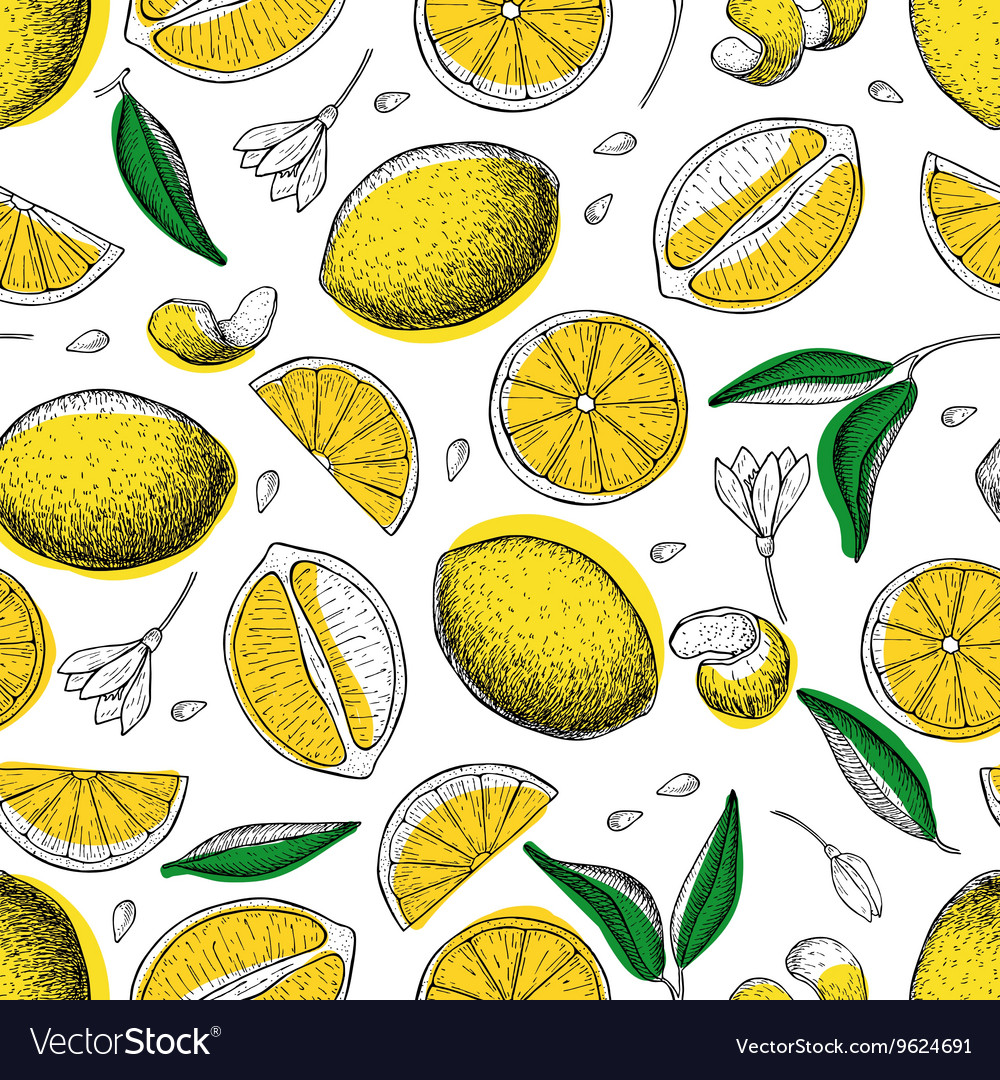 Lemon seamless pattern Drawing lemon