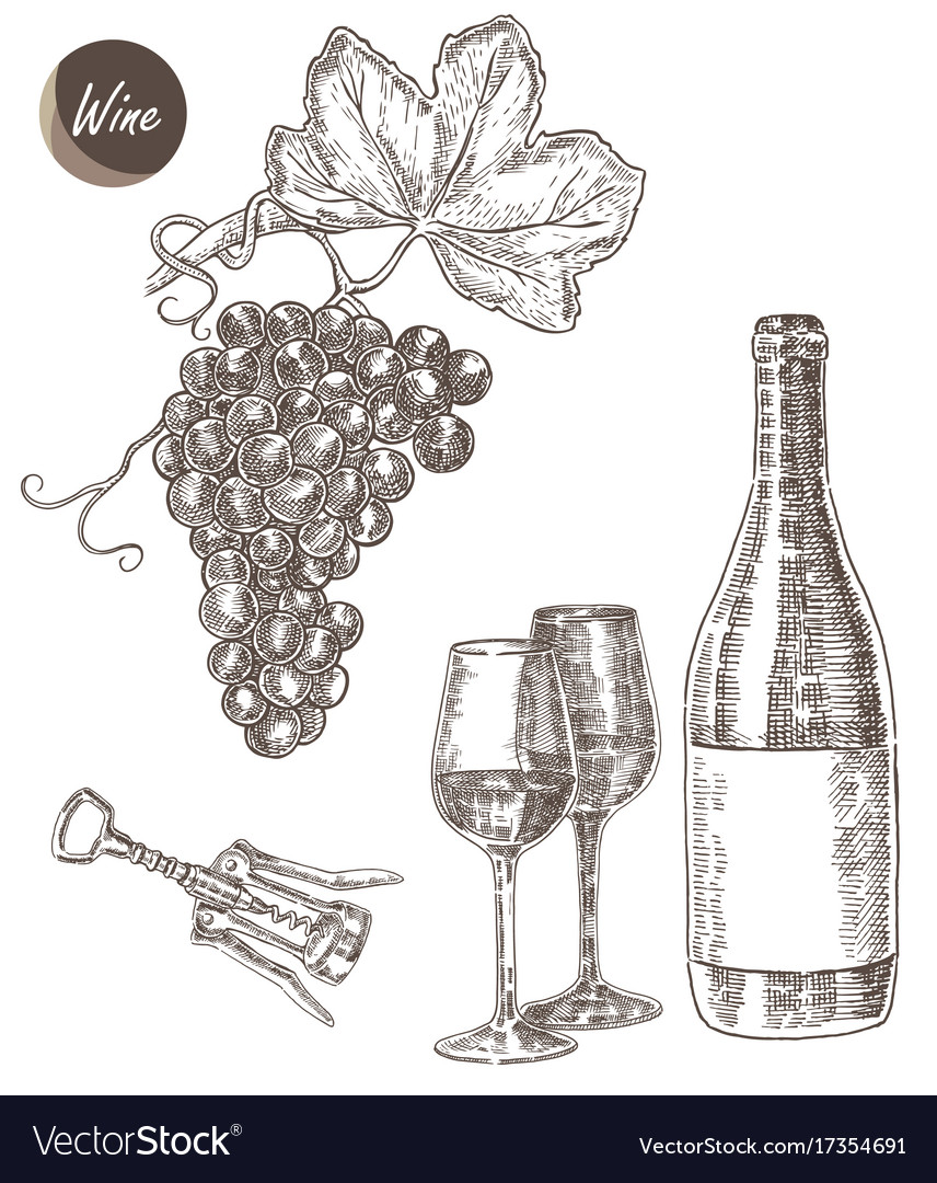 Wine set hand drawn a bottle of wine a glass a