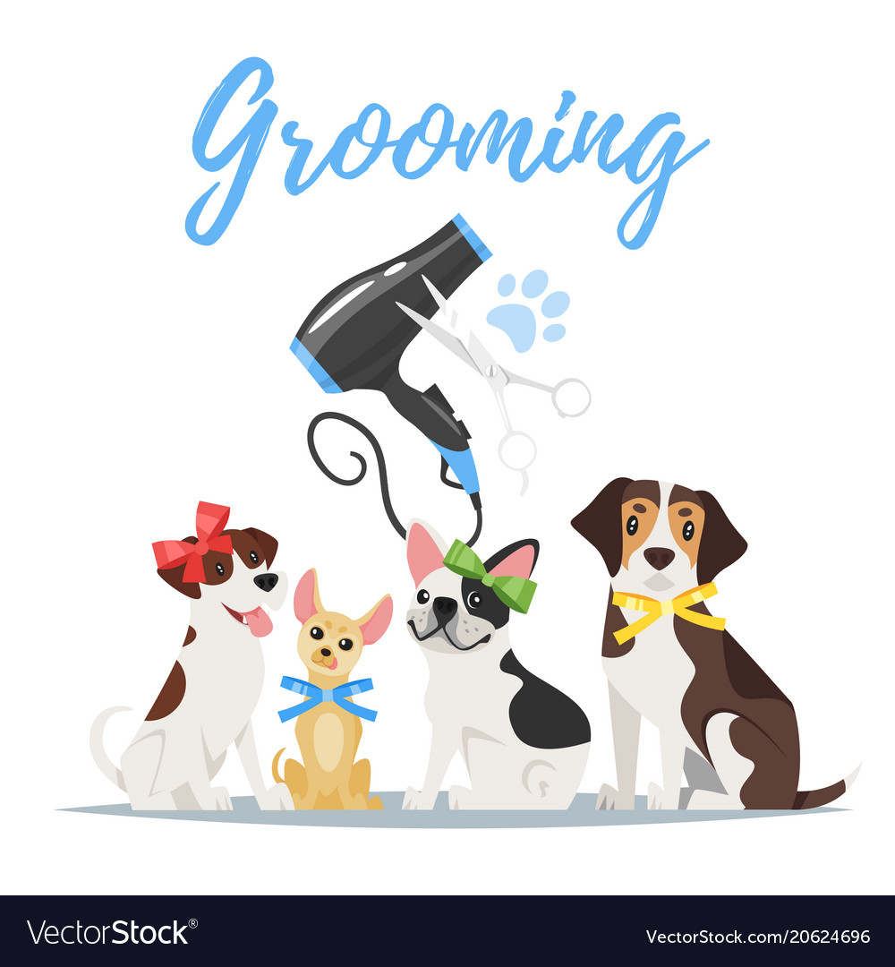 Grooming concept with dogs