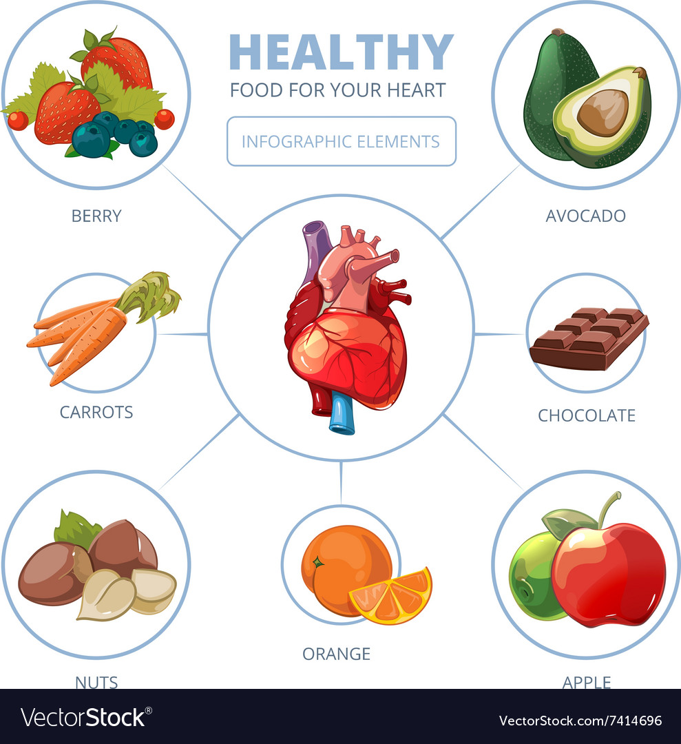 Heart care infographic Healthy foods vector image