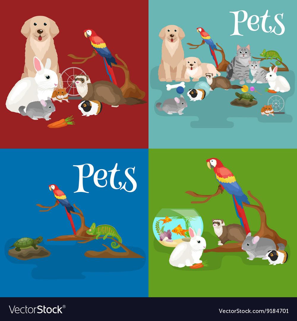 Home pets set cat dog parrot goldfish hamster