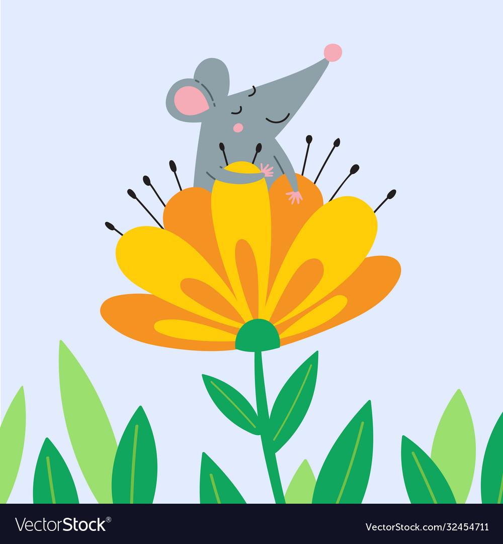 Cute rat sitting in flower