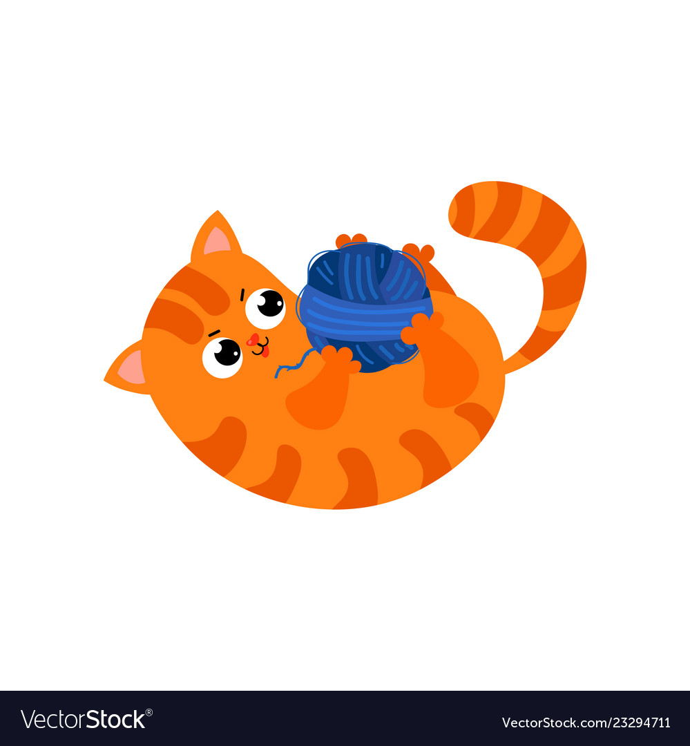 Ute red cat with big black eyes and a nose in the