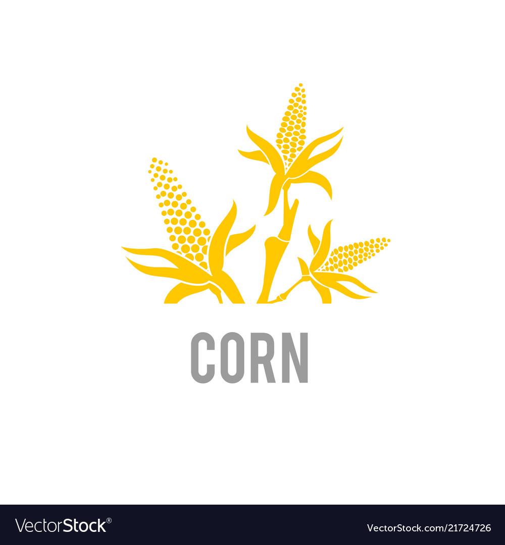 Corn icon agriculture wheat