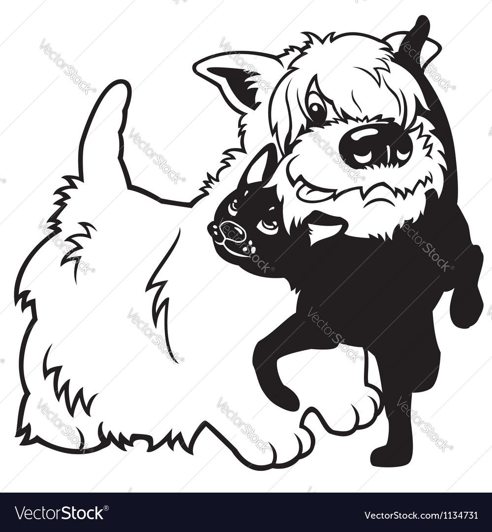 Cartoon west terrier and cat black white vector image