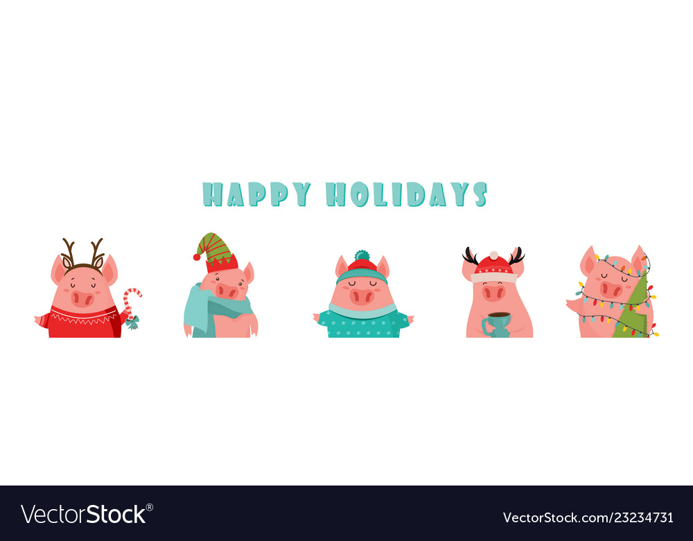 Collection of cute winter pigs new 2019 year