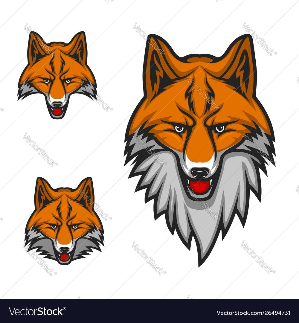 Red fox head muzzle sport club mascot logo icon
